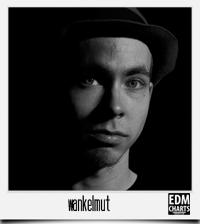 edmcharts_wankelmut