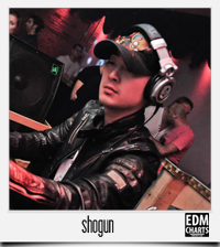 edmcharts_shogun